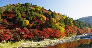 香嵐渓・飯盛山
