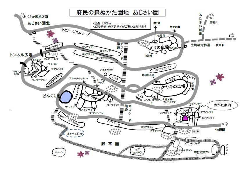 あじさい園マップ